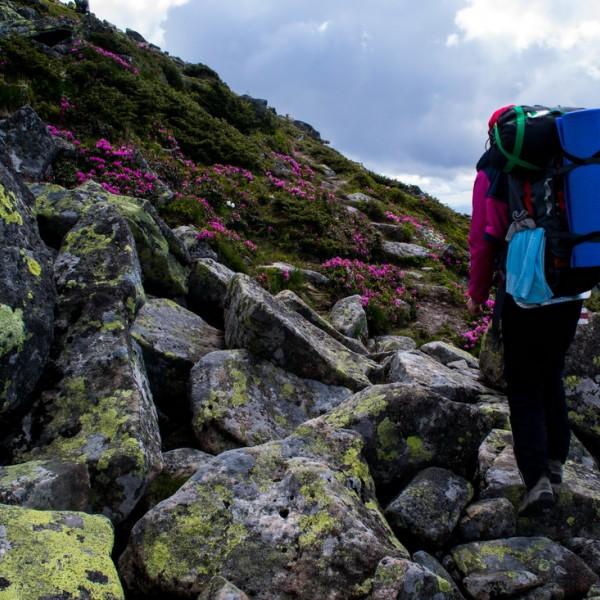 Rafting Cheremosh + hiking / 4 days